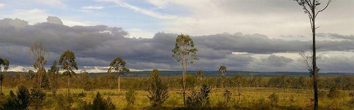 BCCA Landscape